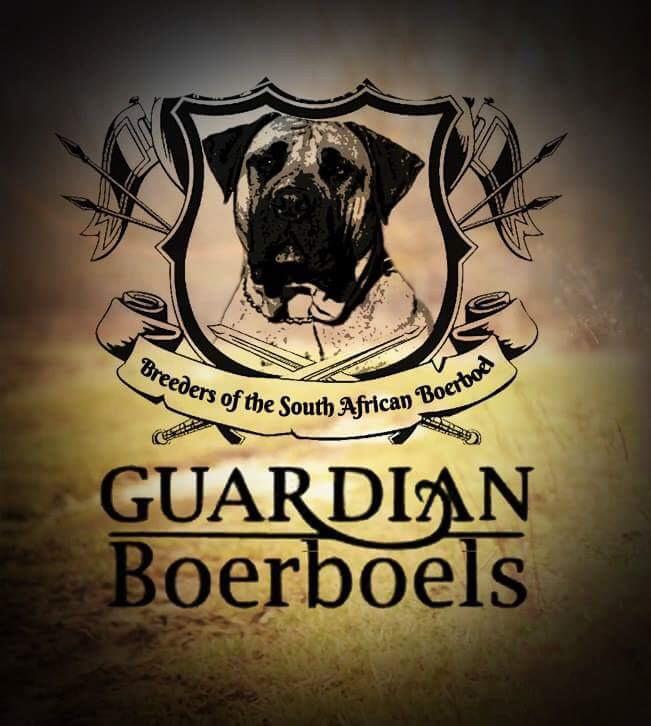 Guardian Home Application – Guardian Boerboels